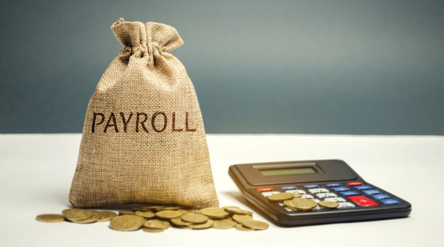 payroll system in Saudi